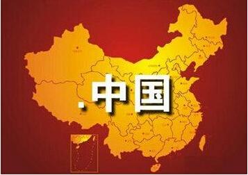 """"""".网络""""和"""".公司""""纯中文域名得到广大网友的支持。"""